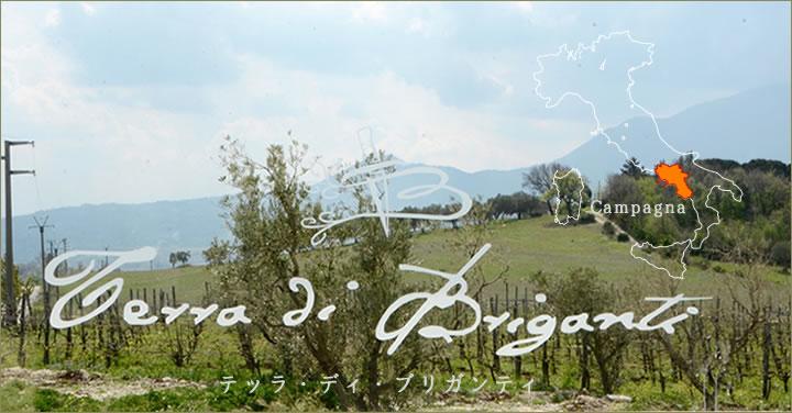 カンパーニャのワイナリー、テッラディブリガンティのワイン
