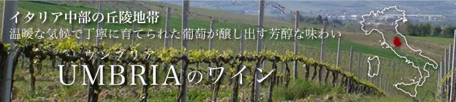 ウンブリアワイン詳細ページ バナー